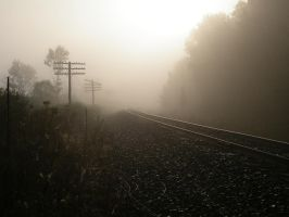 foggy tracks by shod