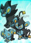 Shinx-Luxio-Luxray by JulieKarbon