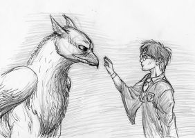 How to train your hippogriff by Beb156