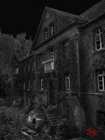 Spencer's Mansion 2 - Dark by Ephebopus365