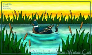 North American Water Cat '07 by Kittensoft