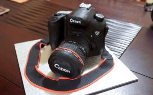 Canon Camera Cake by whisk-us-away