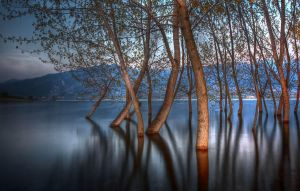 Polifitos Lake IV by Chris-Lamprianidis