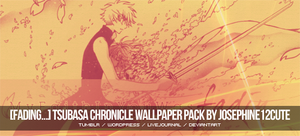 Tsubasa Chronicle Wallpaper Pack by josephine12cute