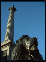 Nelsons Column by unclejuice