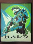 Halo Duct Tape Art by DuctTapeDesigns