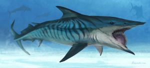 Helicoprion by Kezrek