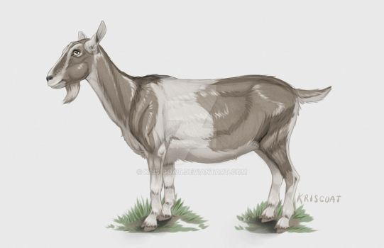 Things just goat real by Kris-Goat