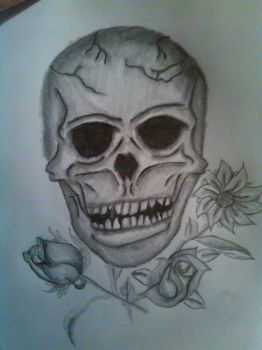Skull and Roses by Atsukikia