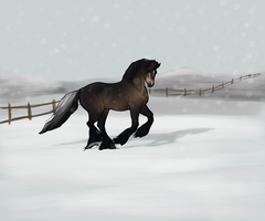 Playing in a winter wonderland by Tuckerlyn