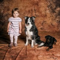 Anna and dogs by salwap
