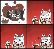 Meet the Medic Cat by ShinobuDash