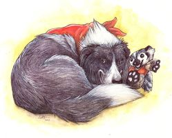 Bucky and the Border Collie by caramitten