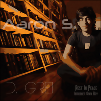 Aaron S. by D-Grei