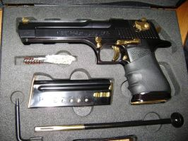 Desert Eagle 44 Magnum Black And Gold by Joel-Cevallos