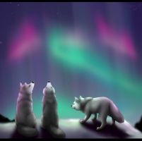 The Northern lights by KaligoDark