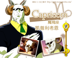Capricorn , fairy tail by icecream80810