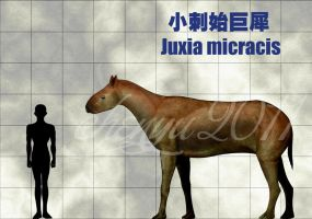 Juxia micracis by sinammonite