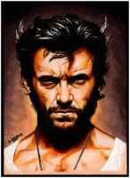 X-MEN ORIGINS: WOLVERINE by S-von-P