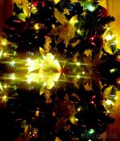 Xmas Tree Reflection 2 by eivaj