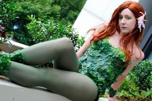 Poison Ivy: 6 by popecerebus