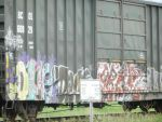 Trainart by murderscene6
