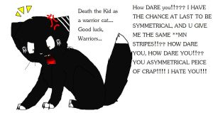 Death the Kid warrior cat style by KingSikey