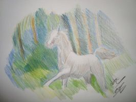 running white horse by Zoey-01