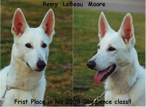 Remy's Graduation Photos by SMH-REDELK