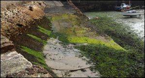 Green Slippy Bits by sags
