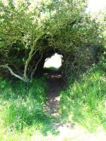 Hobbit Hole by Stock-By-Crystal