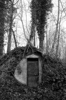 anderson shelter. by nawphotos