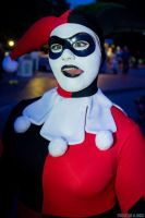 Harley hanging out on Main Street at Disneyland by Lady-Ha-ha
