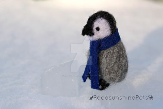Baby Penguin by RaeosunshinePets