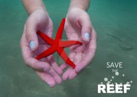 Save the Reef by afyllian
