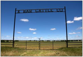 K Bar Cattle Co by SuicideBySafetyPin