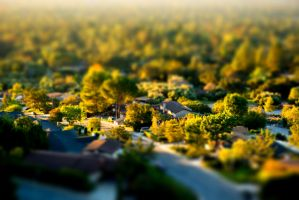 Tiny Town by mree