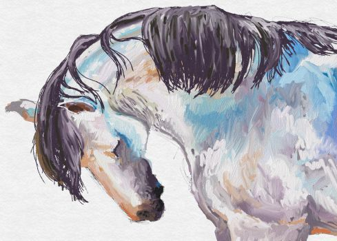 Horse sketch by turquoise-sky