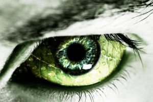 leaf eye by darkstar797