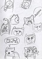 The Many Faces Of Finn The Human by Philanthropic-Racoon