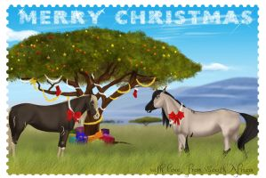 An African Christmas by Equinus
