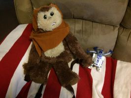 I bought Ewok backpack and R2D2 light spinner toy by Magic-Kristina-KW