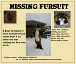 A Furry Friend in need of help by Rumtar