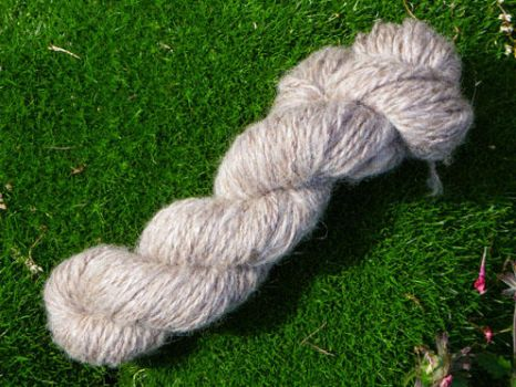 Coopsworth by SilverWheelYarn