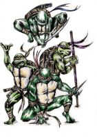 TMNT by ECTO87