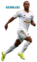 Wayne Routledge by szwejzi