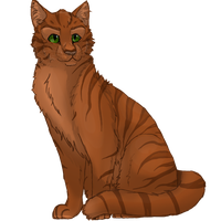 Sharpclaw of SkyClan by xxMoonwish