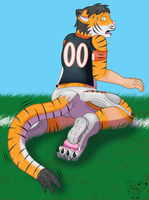 NFL TF #3: Who Dey the Bengal Tiger by Pheagle-Adler