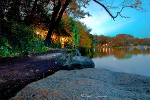 Central Park of New York by ashamandour