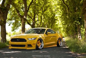 Ford Mustang Stance by SrCky